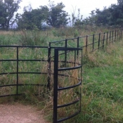 Kissing Gate with Railings